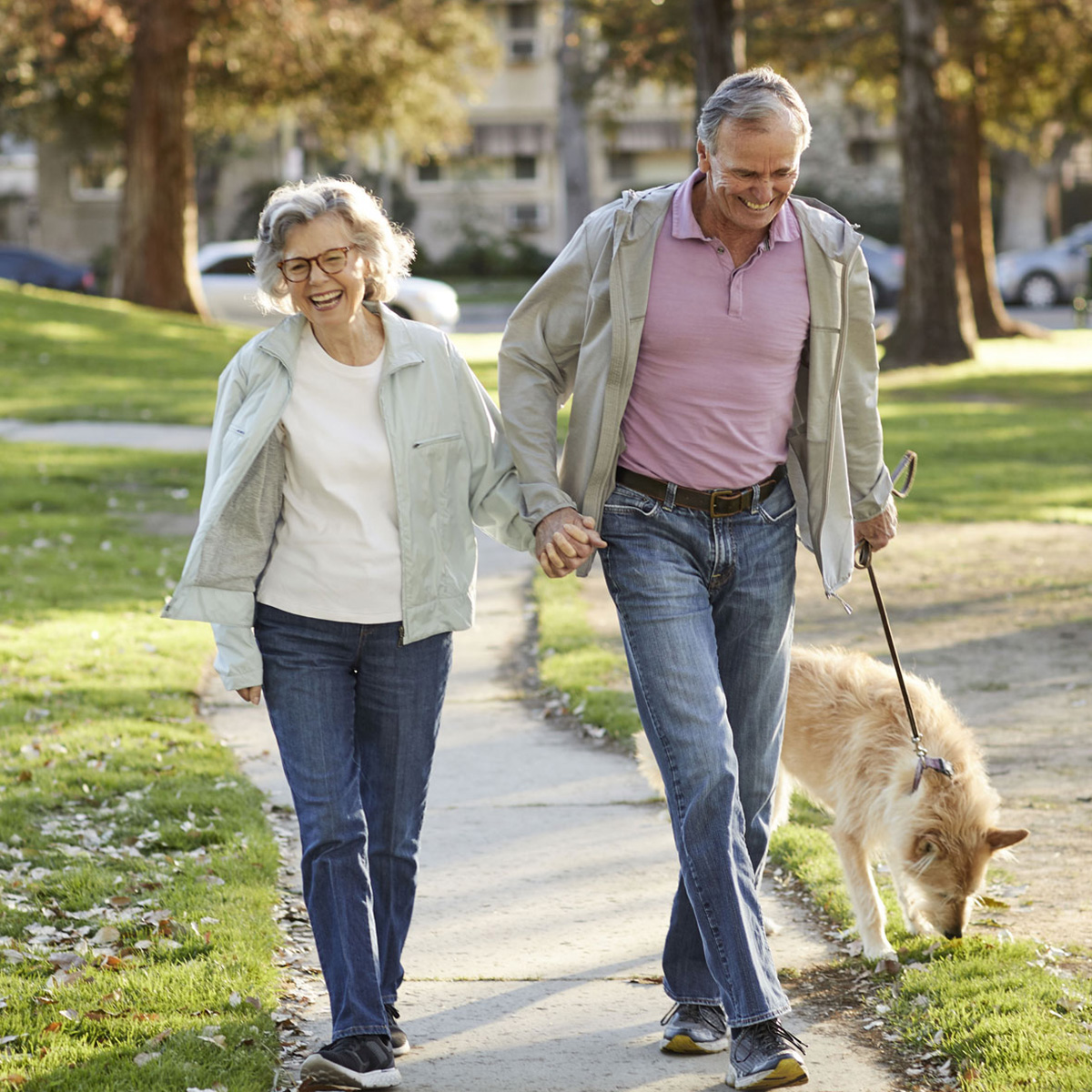 Smiling couple holding hands and walking their dog on a sunny day.