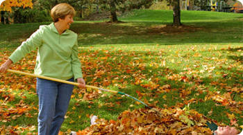 Tips to reduce fall allergies